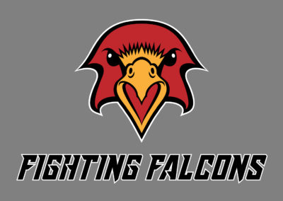 SRS Portfolio - Logos: Fighting Falcons
