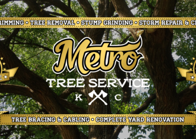 SRS Portfolio - Facebook Graphics: Metro Tree Service cover photo #1